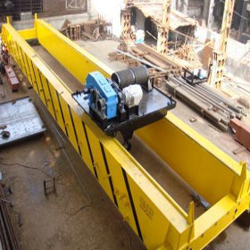 Double girder E.O.T. Crane Manufacturer in india